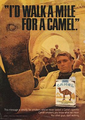 sigarette-camel